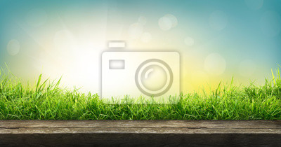 Image A natural spring garden background of fresh green grass with a bright blue sunny sky with a wooden table to place cut out products on.