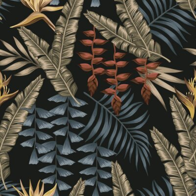 Image Abstract color tropical seamless black background