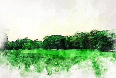 Image Abstract colorful shape on tree and field landscape watercolor illustration painting background.