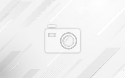 Image Abstract geometric white and gray color elegant background. vector illustration
