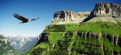 Image aigle dans Ordessa vallée panoramique