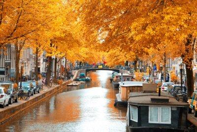 Image Amsterdam.