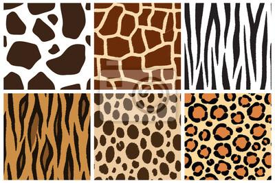 Animal skin. Seamless patterns