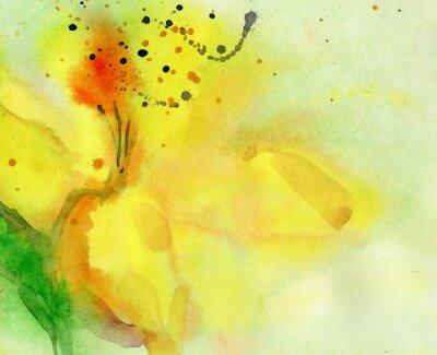 Image Aquarelle, fond, jaune, lis. Peinture sur papier.