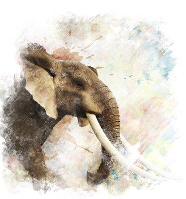 Image Aquarelle image de l'éléphant