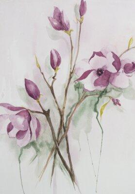 Image Aquarelle originale, fleurs de magnolia.