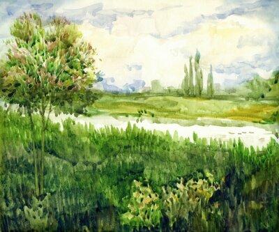 Image Aquarelle paysage. Jeune arbre dans la prairie près de la rivière