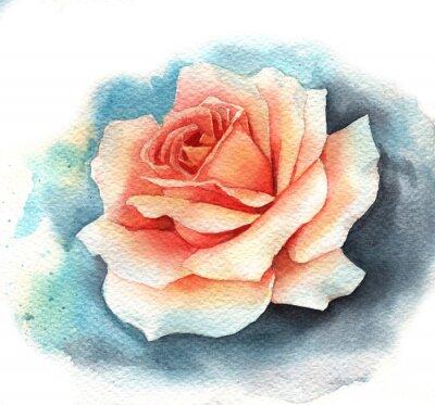 Image Aquarelle rose