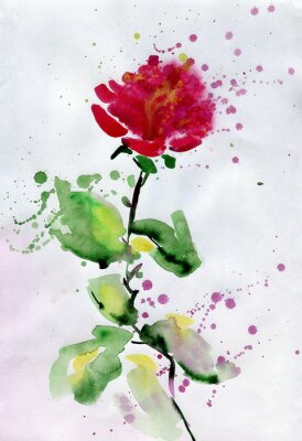 Image Aquarelle rose rouge.