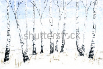 Image Aquarelles Paysage d'hiver dessinées à la main. Illustration de la forêt, arbres d'hiver. Bouleau