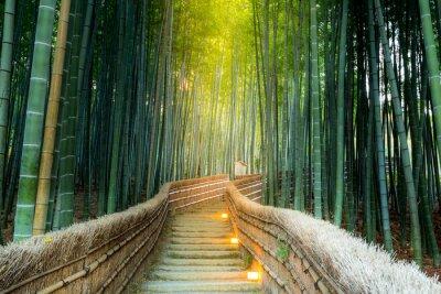Image Arashiyama Bamboo Forest