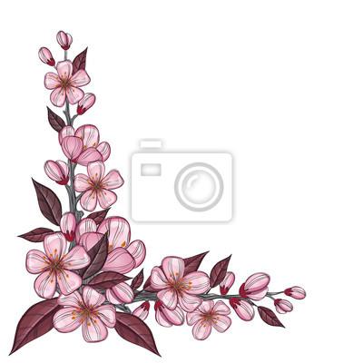 Arbre, branche, dessin, rose, cerise, fleurs, coin, décoration