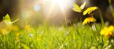 Image art abstract spring background or summer background with fresh grass