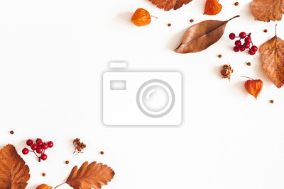 Image Autumn composition. Dried leaves, flowers, rowan berries on white background. Autumn, fall, thanksgiving day concept. Flat lay, top view, copy space
