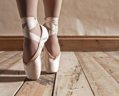 Image Ballet Shoes sur plancher de bois