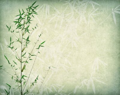 Image bamboo on old paper background