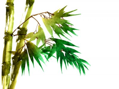 Image Bambou tropical avec des feuilles