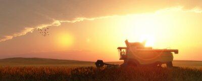 Image batteuse de blé
