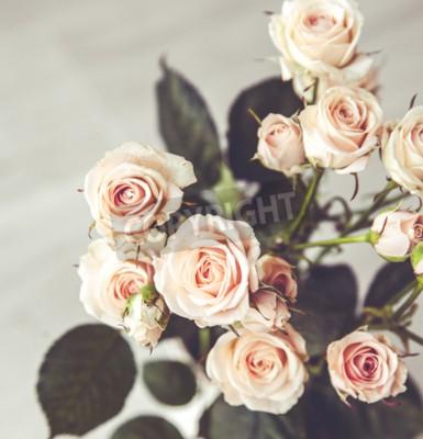 Image Beau, bouquet, pêchers, roses, vendange, vase, noir, fond