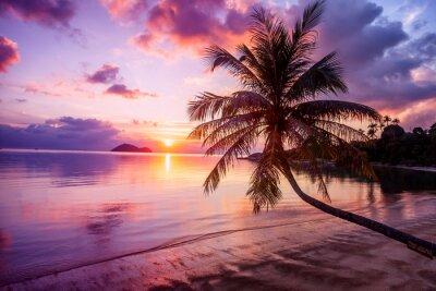 Image Beau coucher de soleil lumineux sur une plage de paradis tropical