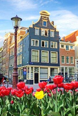 Image Beau paysage avec des tulipes et des maisons à Amsterdam, en Hollande