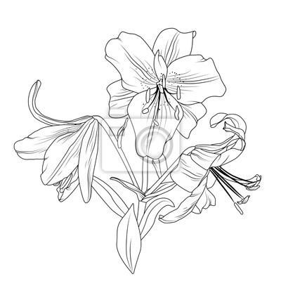 Belle Composition Florale De Bouquet De Fleurs De Printemps