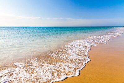Image Belle plage de l'océan