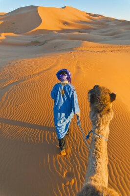 Image Berbère marche avec chameau dans l'Erg Chebbi, Maroc