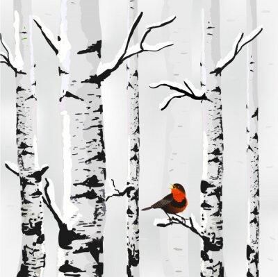Image Birch dans la neige, carte d'hiver dans le vecteur