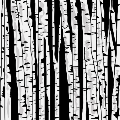 Image Birch trois pour vous concevez
