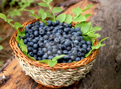 bleuets frais dans un panier