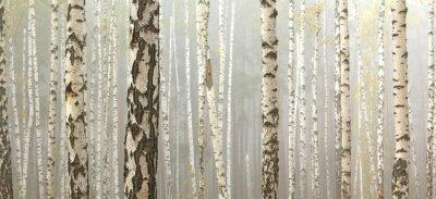 Image Bosquet de bouleaux et de l'herbe sèche en début d'automne, tomber panorama