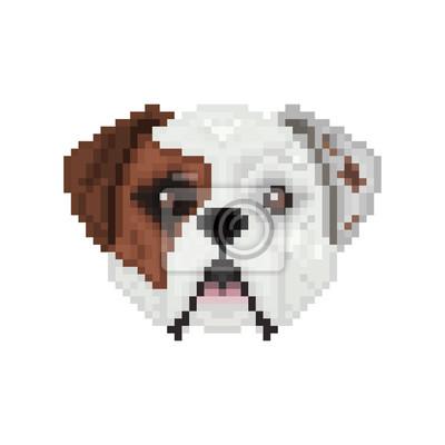 Image Bouledogue Américain Tête De Chien Dans Le Style De Pixel Art
