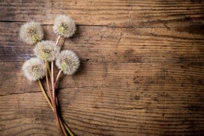 Image Bouquet, blanc, pissenlits, bois, table