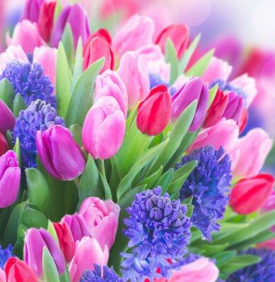 Image Bouquet, bleu, jacinthe, tulips
