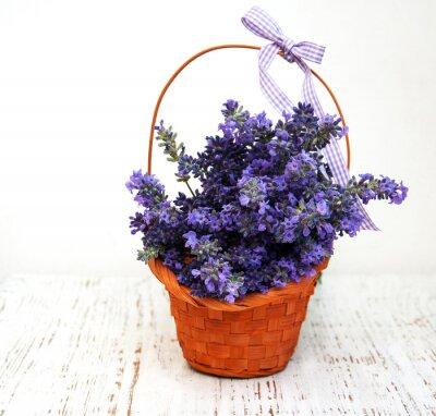 Image Bouquet de lavande