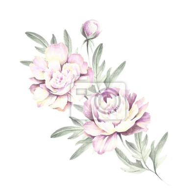 Image Bouquet De Pivoines Dessin à La Main Aquarelle Illustration