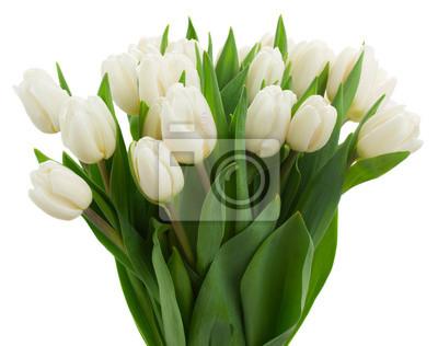 Image bouquet de tulipes blanches