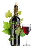 Bouteille de vin et verre entrelacées avec de la vigne
