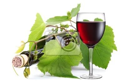 Bouteille de vin et verre entrelacées avec de la vigne. Images myloview