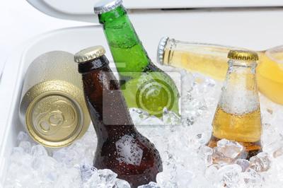 Bouteilles et canettes de bière assortis dans Cooler
