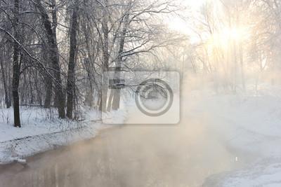 brouillard en hiver