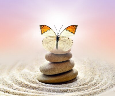 Image Butterfly and stones balance