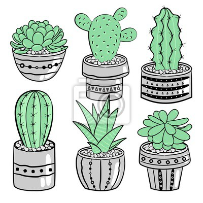 Cactus Mignons Pots De Fleurs Ensemble Vectoriel Autocollants