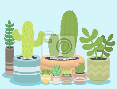 Cactus Plante Verte Cactace Maison Nature Cactus Vecteur Peintures Murales Tableaux Cruche Maison Fleurir Myloview Fr
