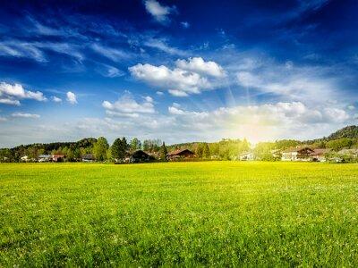 Image Campagne, pré, champ, soleil, bleu, ciel