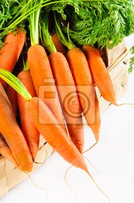 carottes fraîches