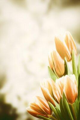 Image Carte postale vintage avec fleurs de tulipe