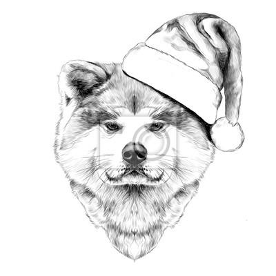 Image Chaîne De Chien Musclé Akita Inu Au Chapeau De Père Noël Visage