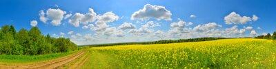 Image champ de fleurs de printemps